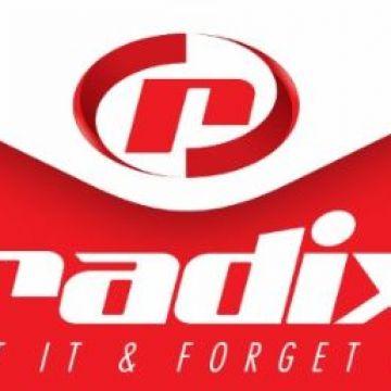 Radix Power Solutions